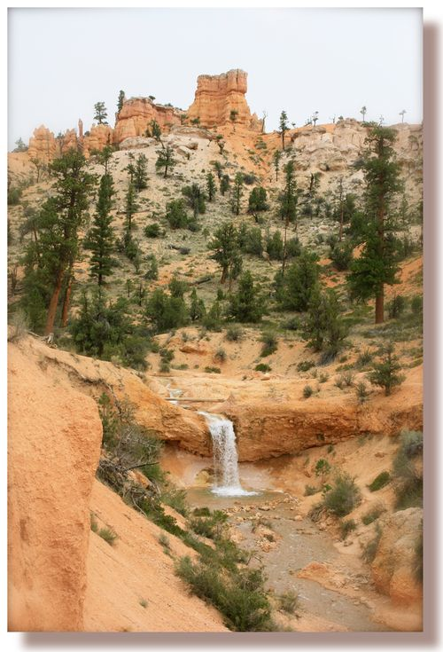 Tropic Ditch Waterfall