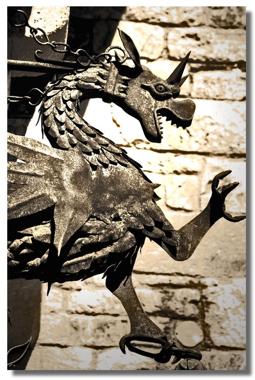 Dragon of the Castle