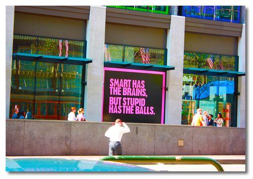 Stupid Has The Balls
