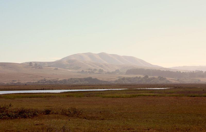 Elephant Mountain'