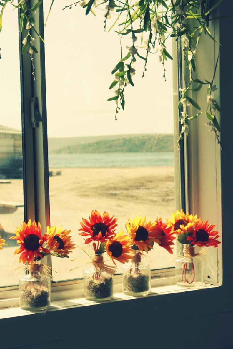 Oyster Farm window lg