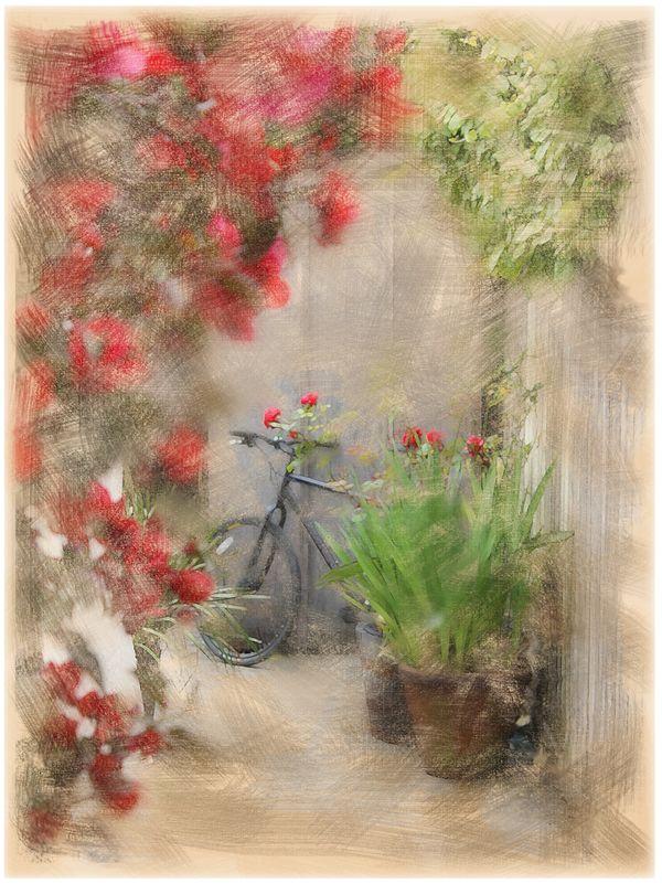 Stranded Bike