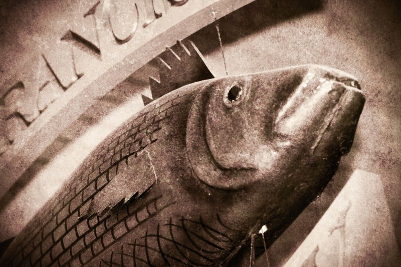 Ferry Building Fish Market
