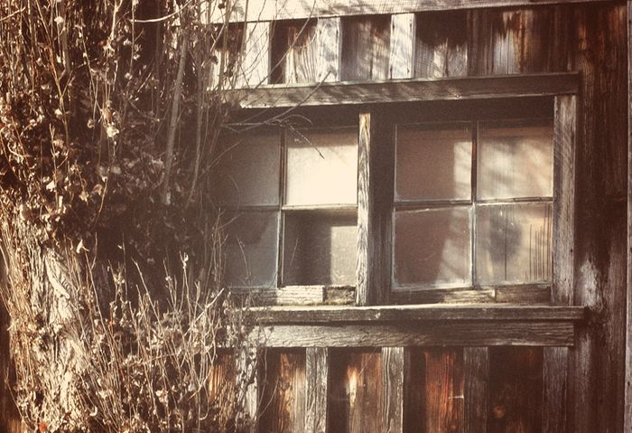 Shed Window sm