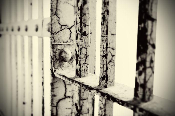 Bars of Alcatraz sm